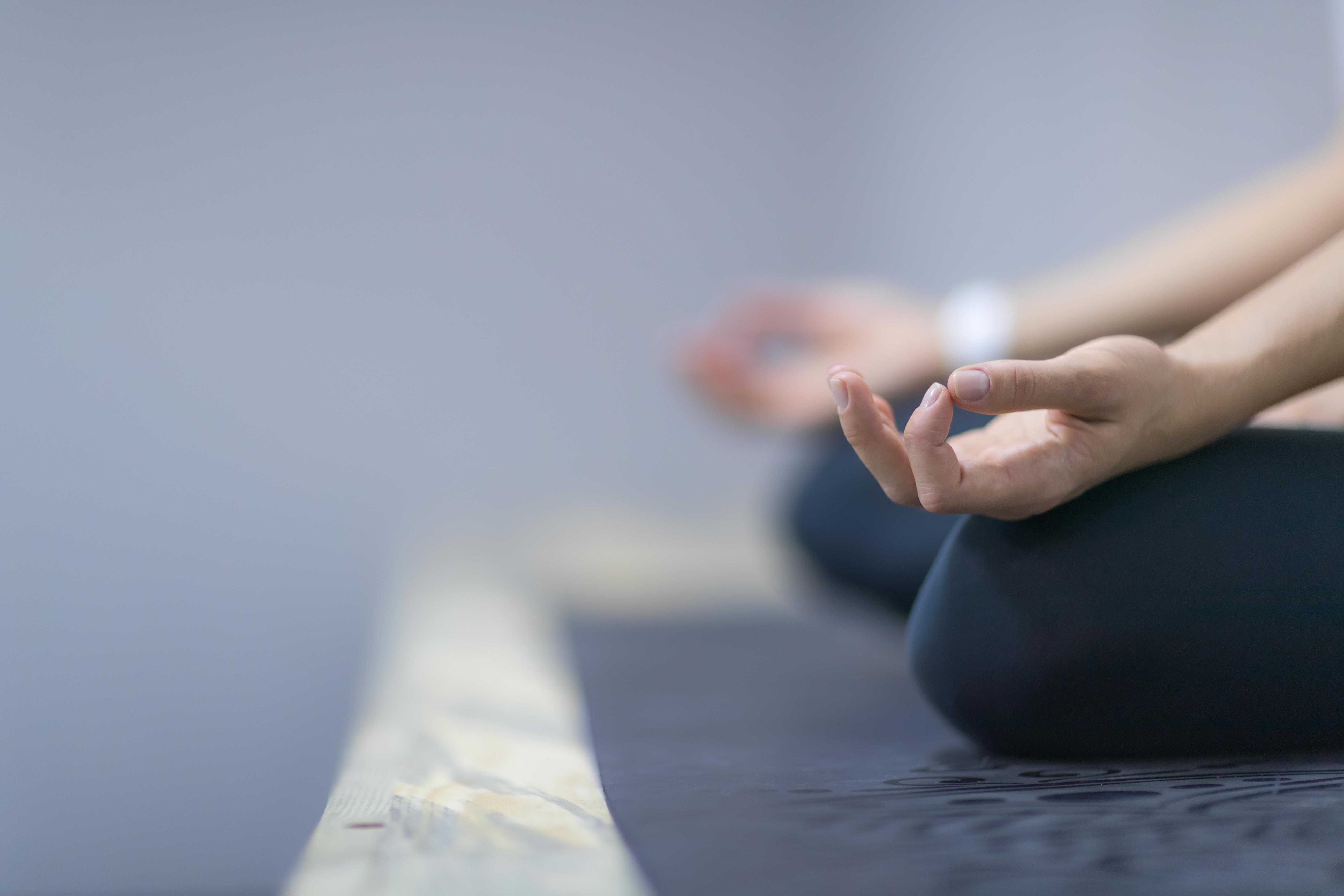 meditation dijon